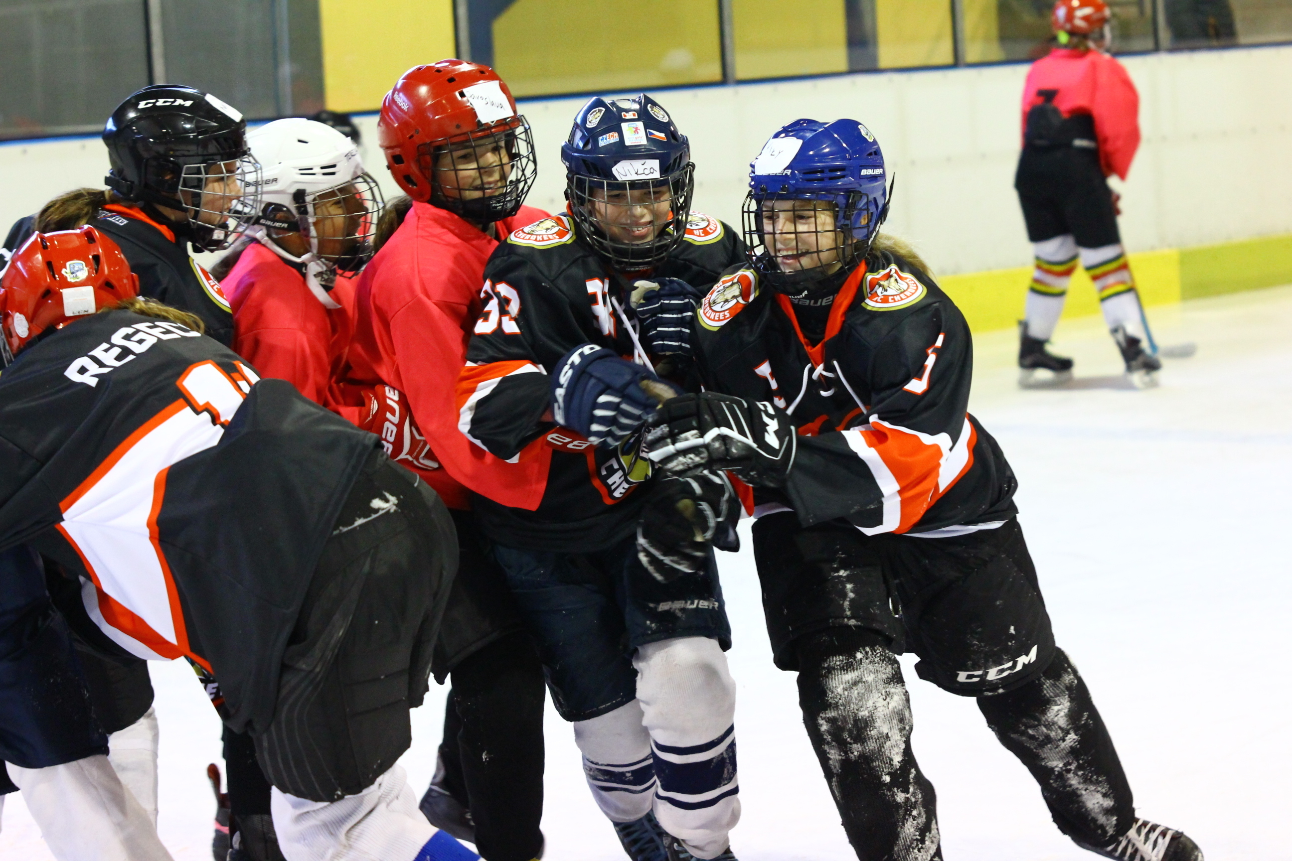 IIHF - Alleghe brings Italy on the map